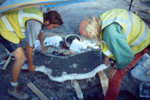 Lifting an excavated bone in its plaster jacket.