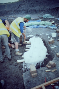 Separating the plaster jacket from the underlying clay.